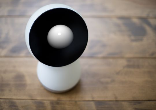 635618551402729171-jibo-wood-counter-looking-up-right
